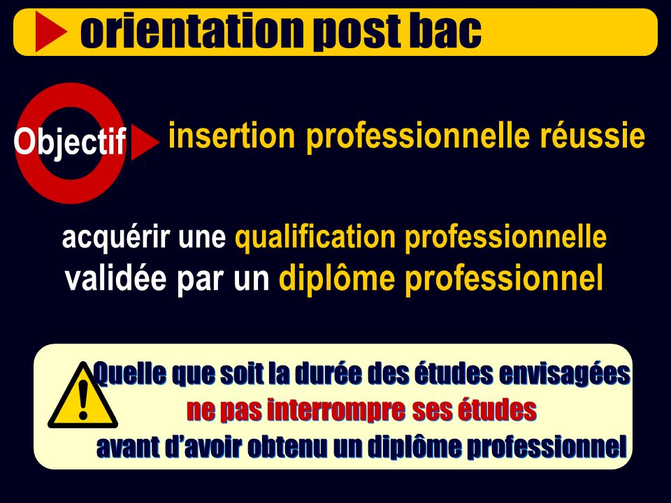 insertion professionnelle réussie Objectif