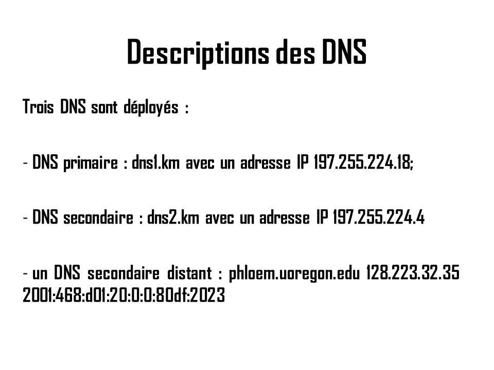Descriptions des DNS Trois DNS sont déployés :