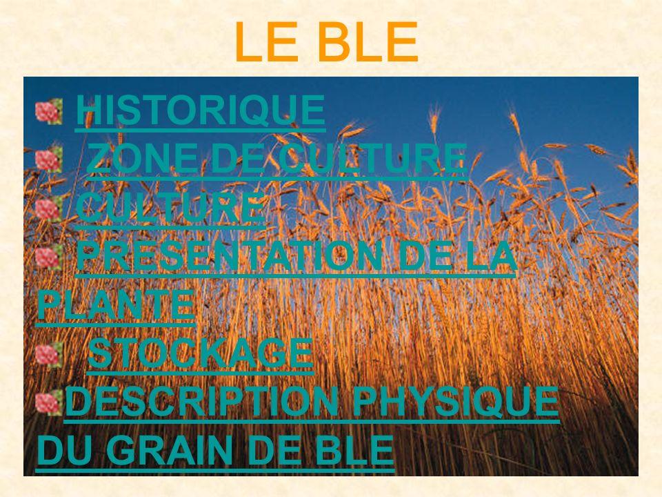 LE BLE HISTORIQUE ZONE DE CULTURE CULTURE PRESENTATION DE LA PLANTE