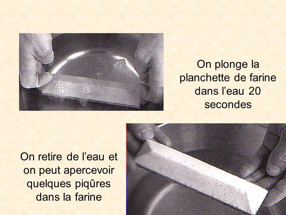 On plonge la planchette de farine dans l'eau 20 secondes