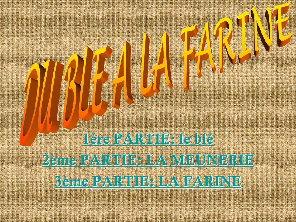 1ère PARTIE: le blé 2ème PARTIE: LA MEUNERIE 3ème PARTIE: LA FARINE