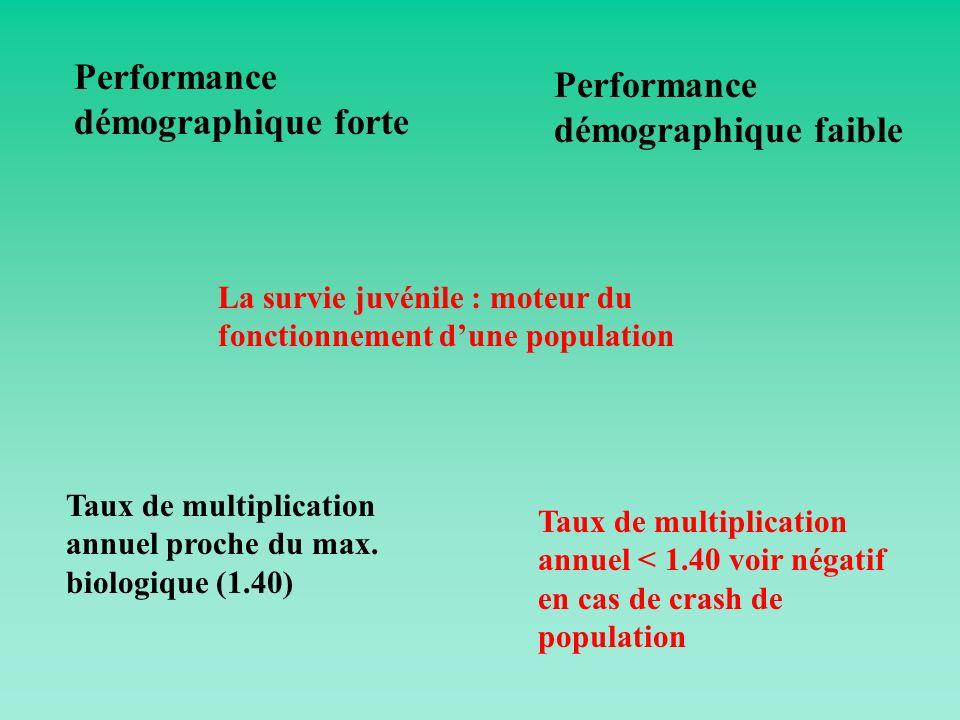 Performance démographique forte Performance démographique faible