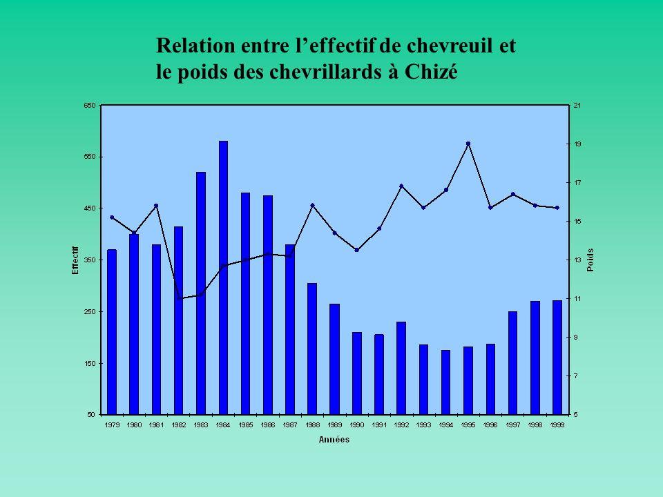 Relation entre l'effectif de chevreuil et le poids des chevrillards à Chizé