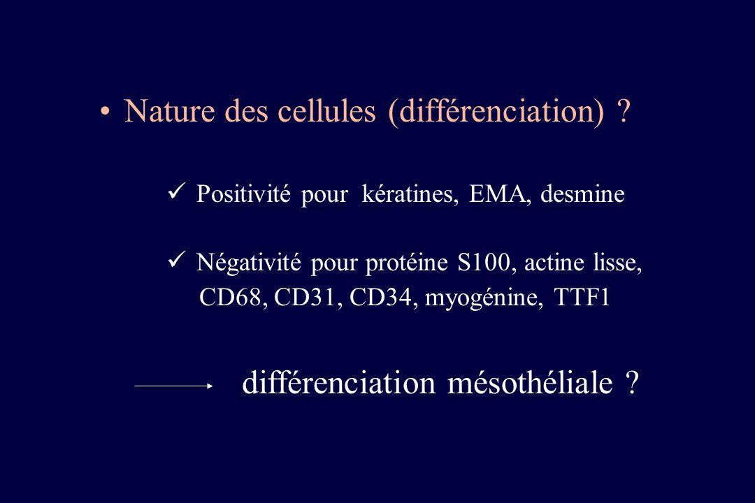 Nature des cellules (différenciation)