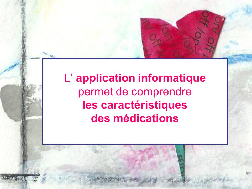 L' application informatique