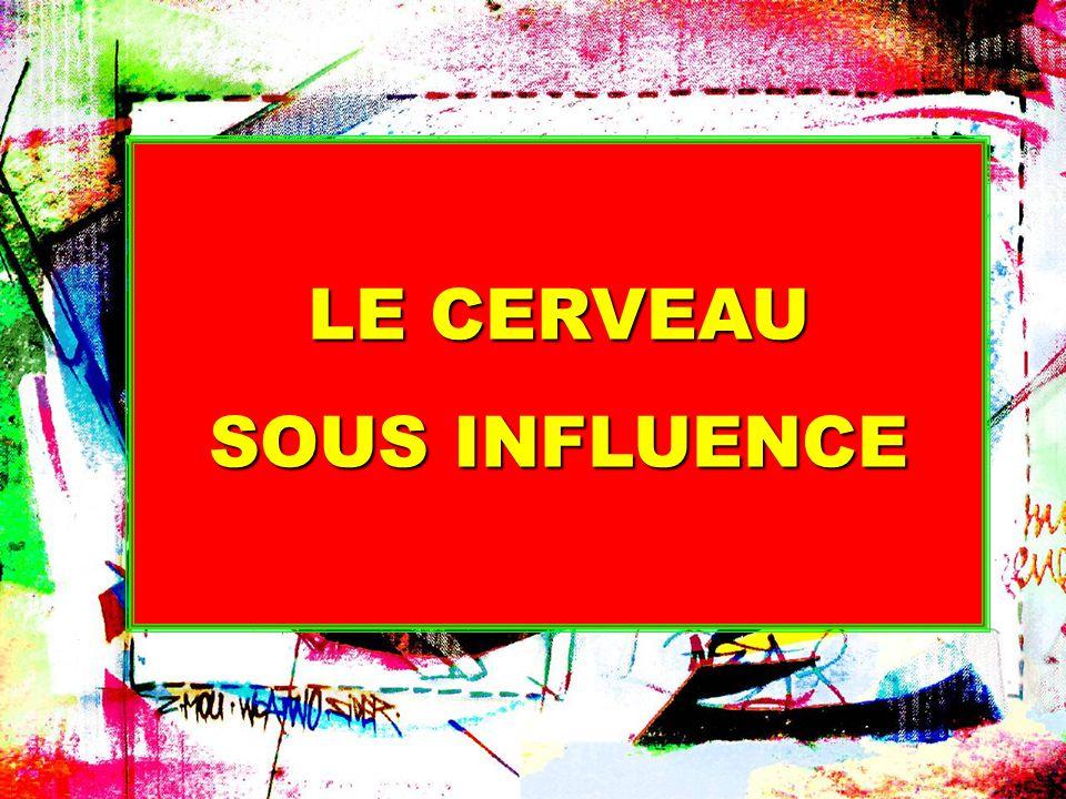 LE CERVEAU SOUS INFLUENCE