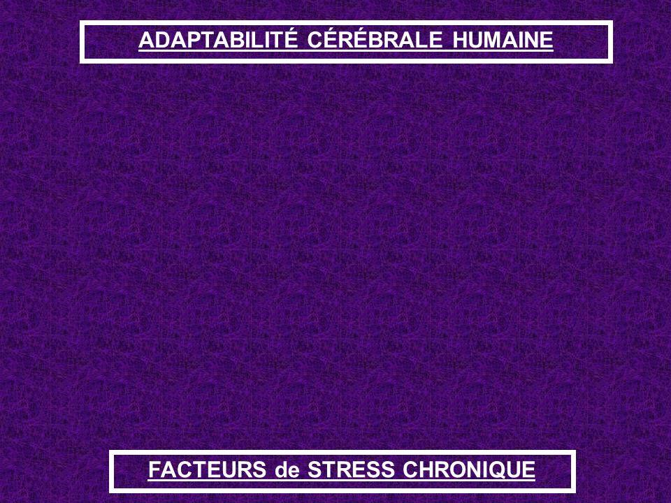 ADAPTABILITÉ CÉRÉBRALE HUMAINE FACTEURS de STRESS CHRONIQUE