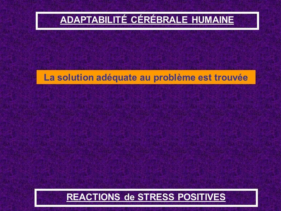 ADAPTABILITÉ CÉRÉBRALE HUMAINE