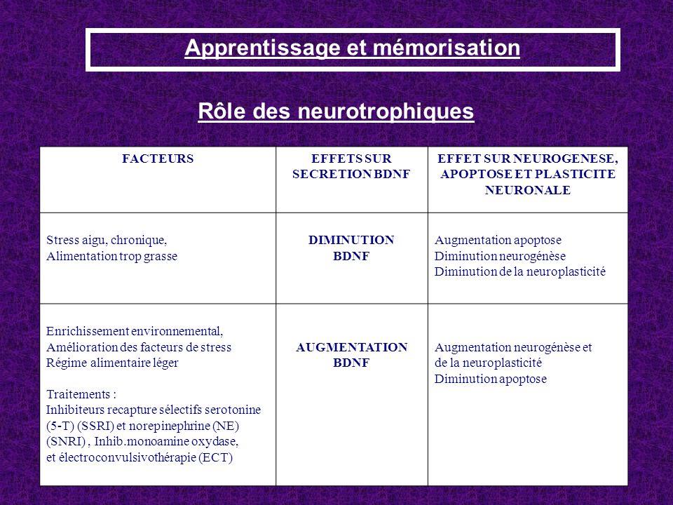 Rôle des neurotrophiques