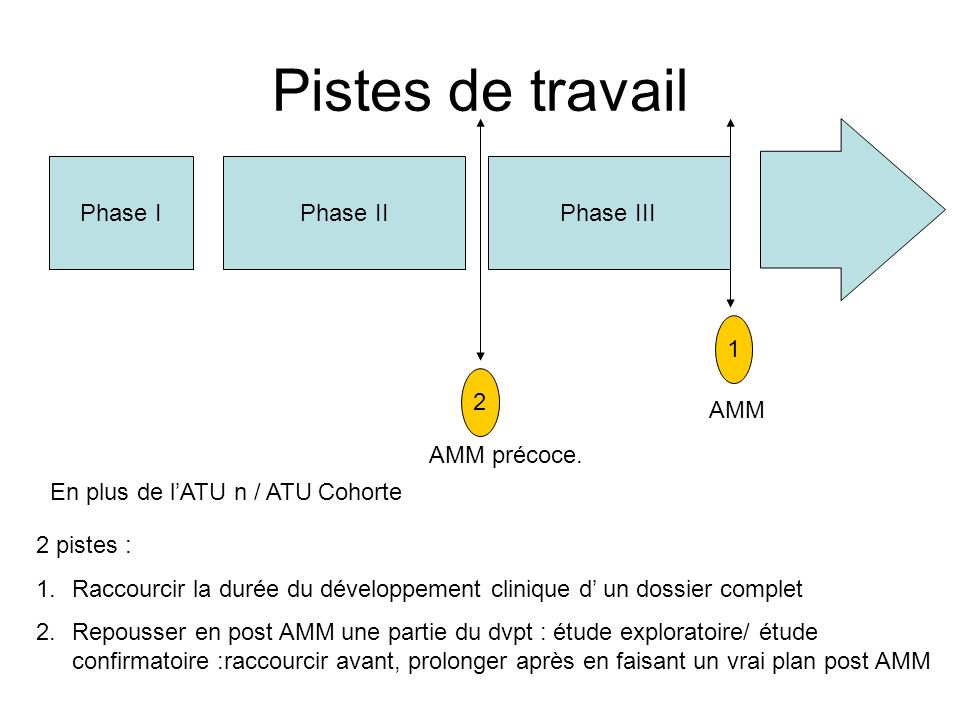 Pistes de travail Phase I Phase II Phase III 1 2 AMM AMM précoce.