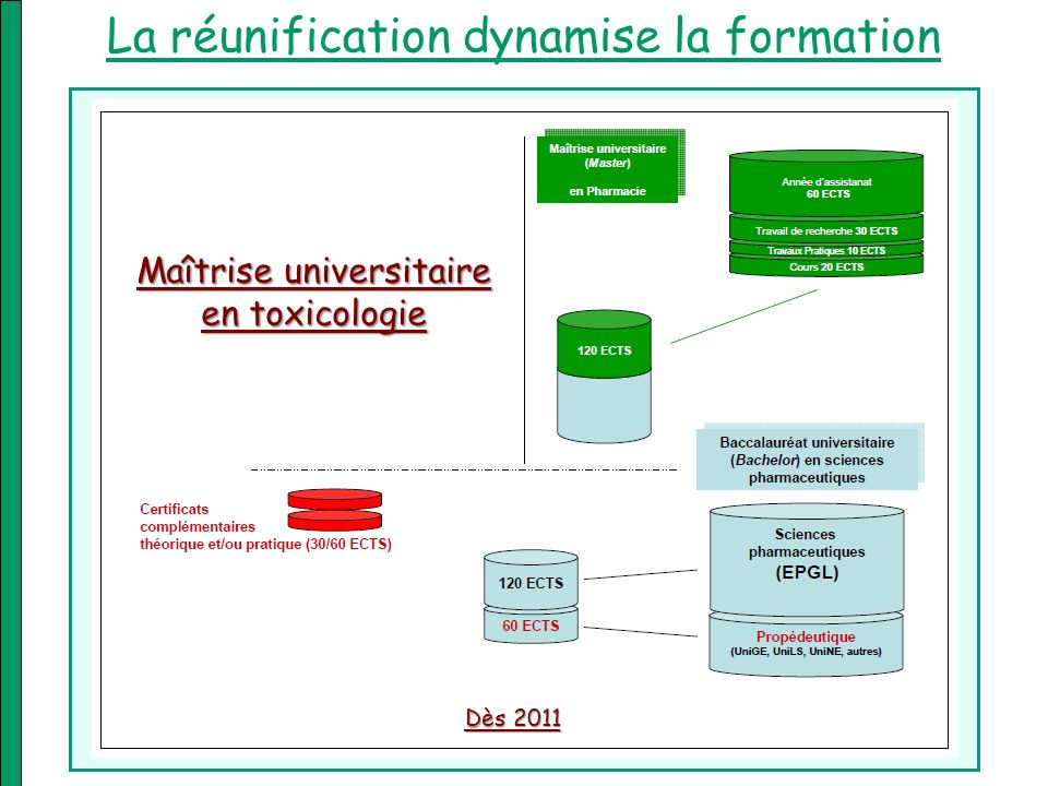 La réunification dynamise la formation