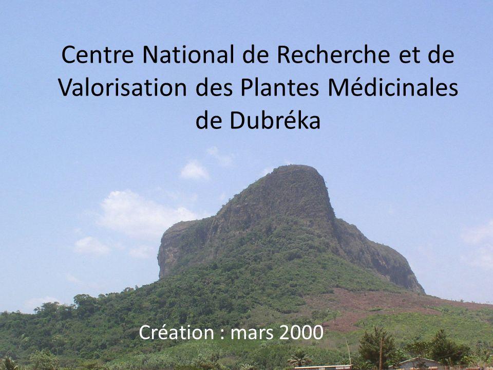 Centre National de Recherche et de Valorisation des Plantes Médicinales de Dubréka