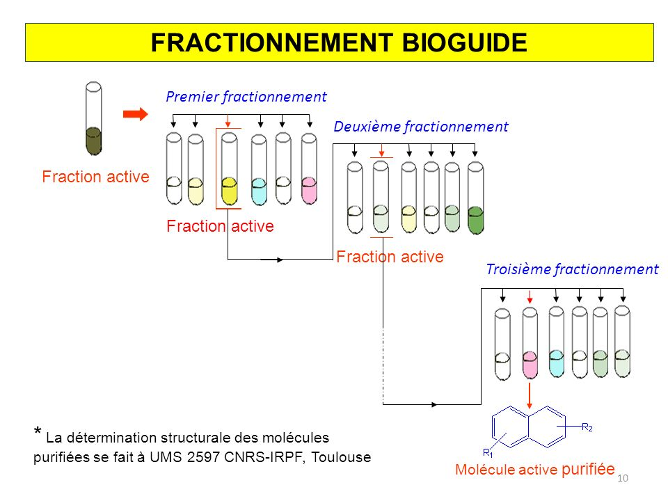 FRACTIONNEMENT BIOGUIDE
