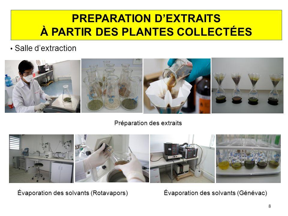 PREPARATION D'EXTRAITS À PARTIR DES PLANTES COLLECTÉES