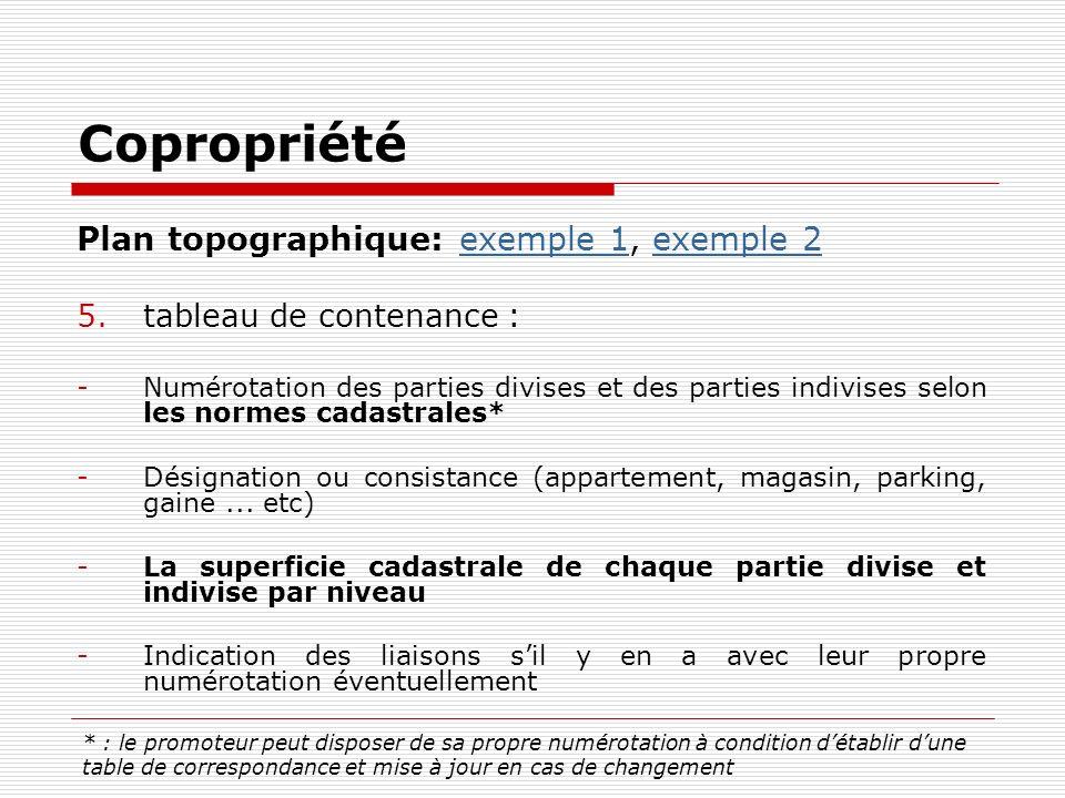 Copropriété Plan topographique: exemple 1, exemple 2