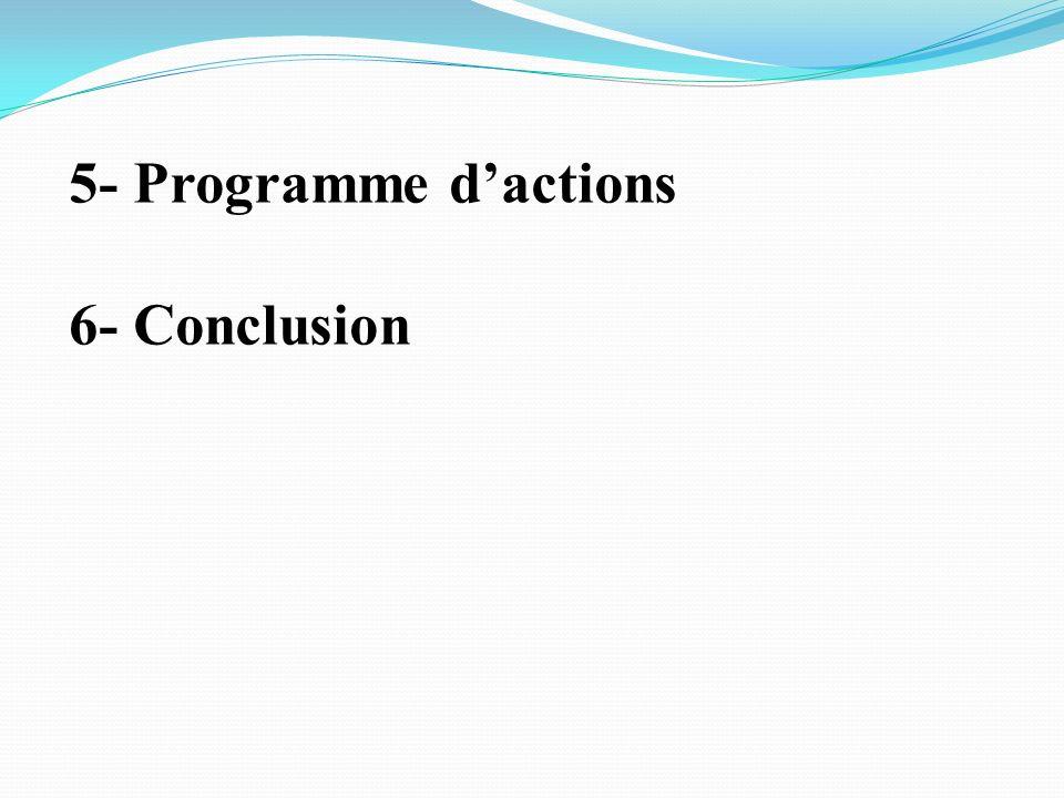 5- Programme d'actions 6- Conclusion