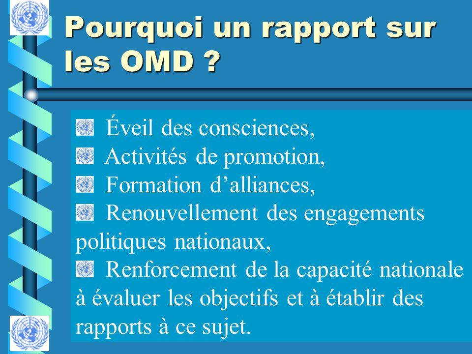 Pourquoi un rapport sur les OMD