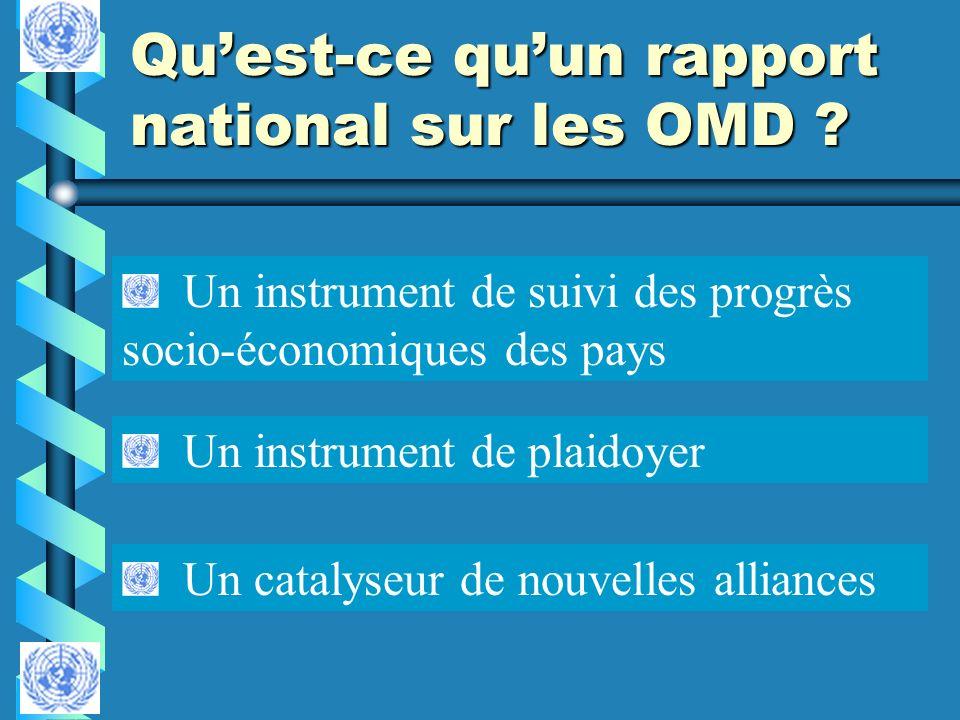 Qu'est-ce qu'un rapport national sur les OMD
