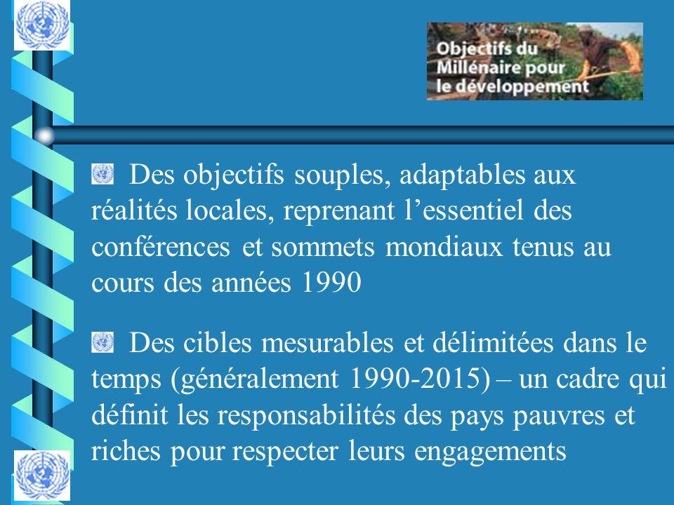 Des objectifs souples, adaptables aux réalités locales, reprenant l'essentiel des conférences et sommets mondiaux tenus au cours des années 1990