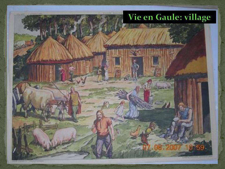Vie en Gaule: village