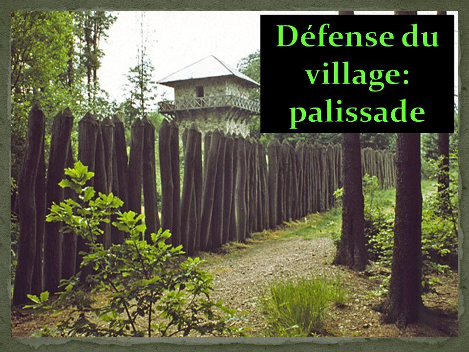 Défense du village: palissade