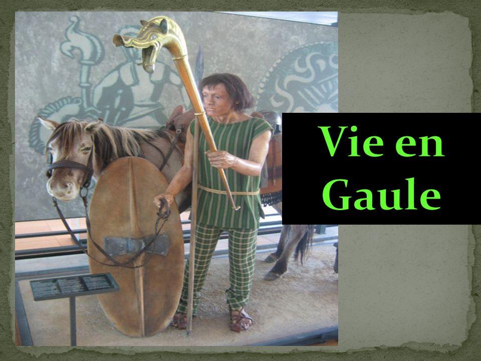 Vie en Gaule