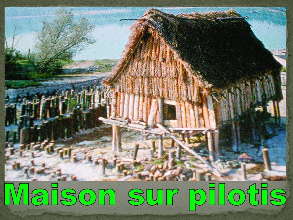 Maison sur pilotis
