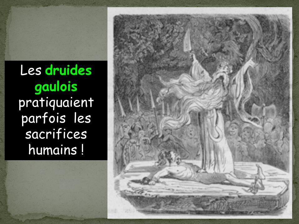 Les druides gaulois pratiquaient parfois les sacrifices humains !