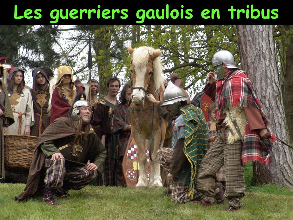 Les guerriers gaulois en tribus