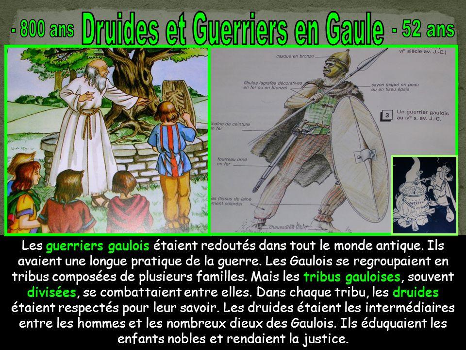 Druides et Guerriers en Gaule