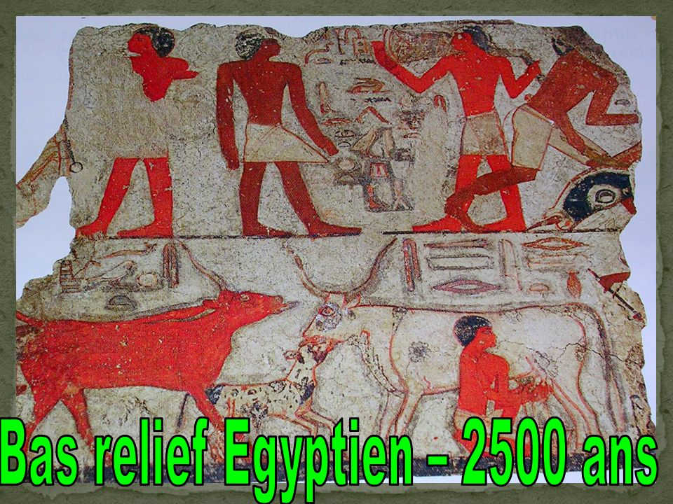 Bas relief Egyptien – 2500 ans