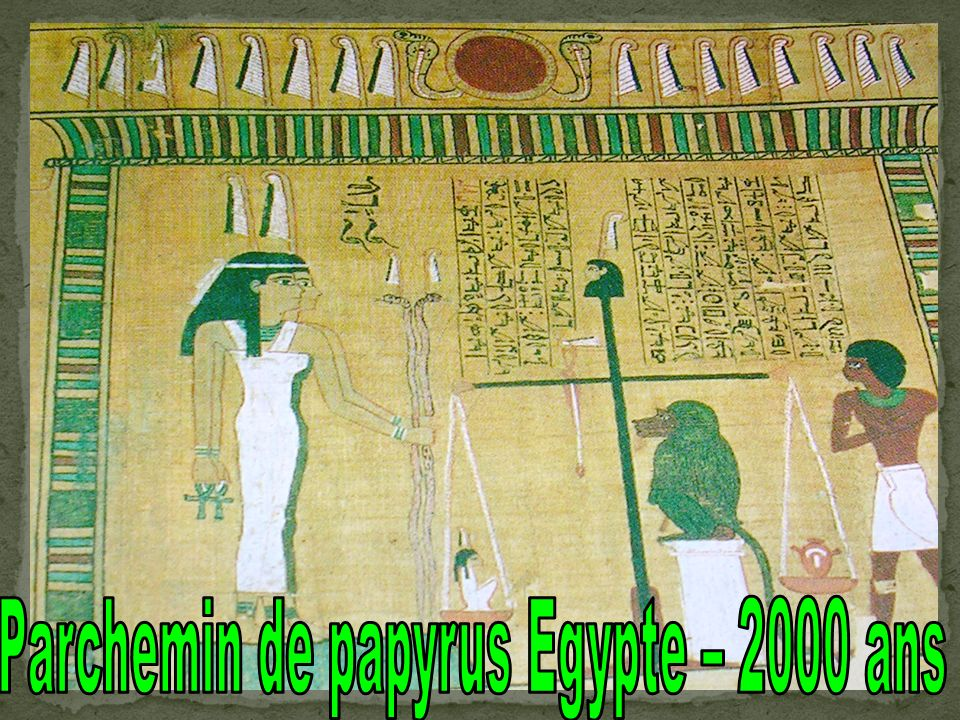 Parchemin de papyrus Egypte – 2000 ans