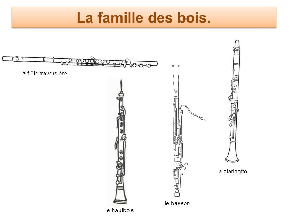 La famille des bois. la flûte traversière la clarinette le basson