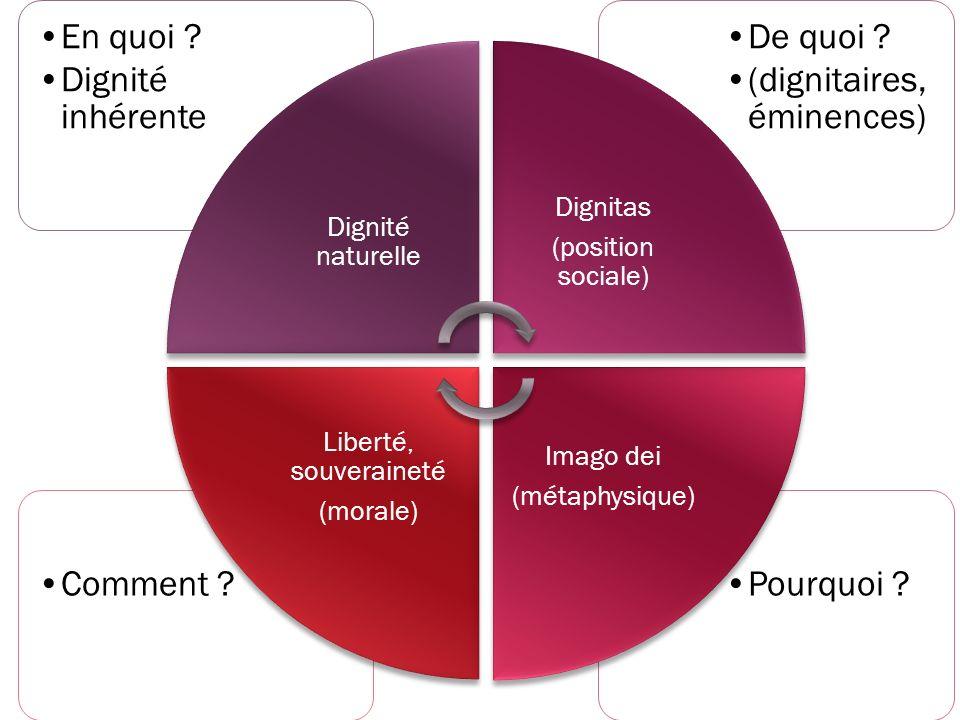 Dignité naturelle En quoi Dignité inhérente. (position sociale) Dignitas. De quoi (dignitaires, éminences)