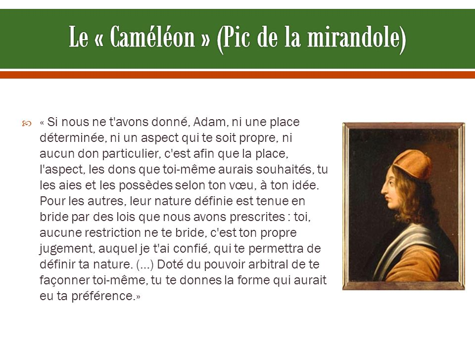 Le « Caméléon » (Pic de la mirandole)