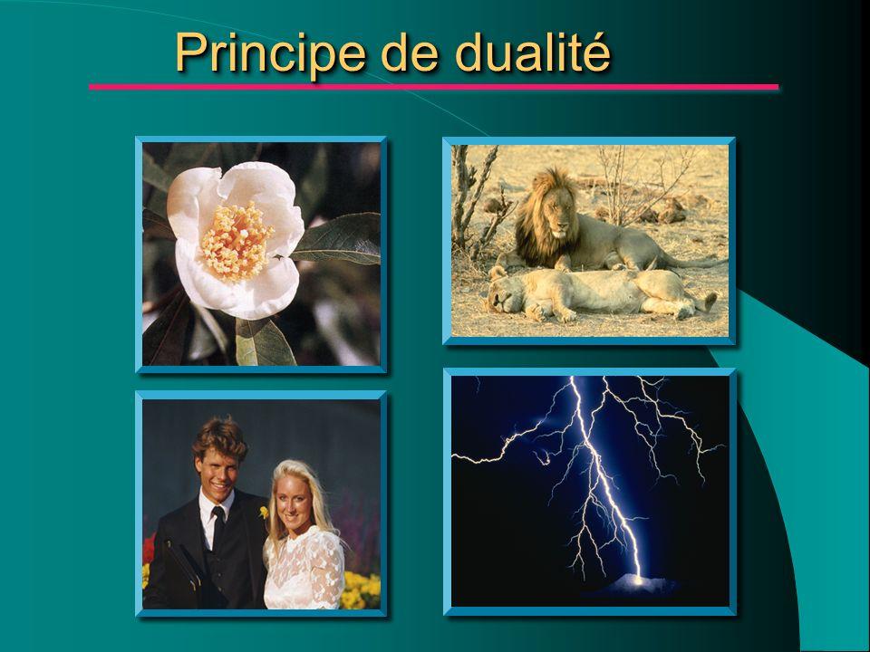 Principe de dualité