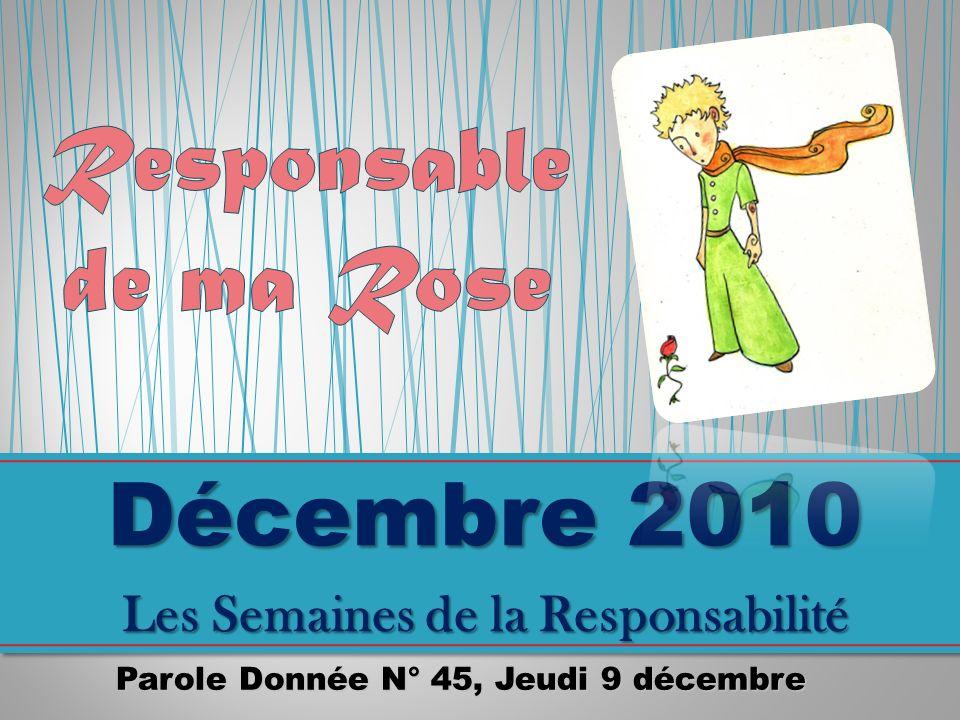 Décembre 2010 Responsable de ma Rose Les Semaines de la Responsabilité