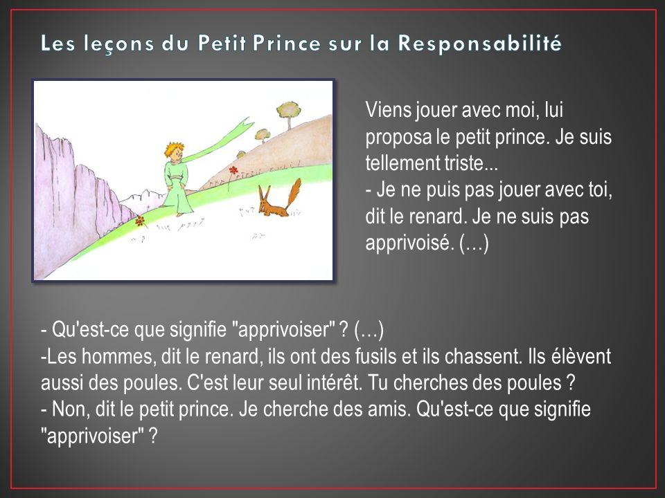 Les leçons du Petit Prince sur la Responsabilité