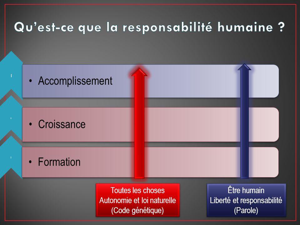 Qu'est-ce que la responsabilité humaine