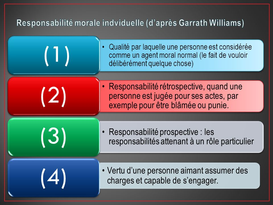 Responsabilité morale indviduelle (d'après Garrath Williams)