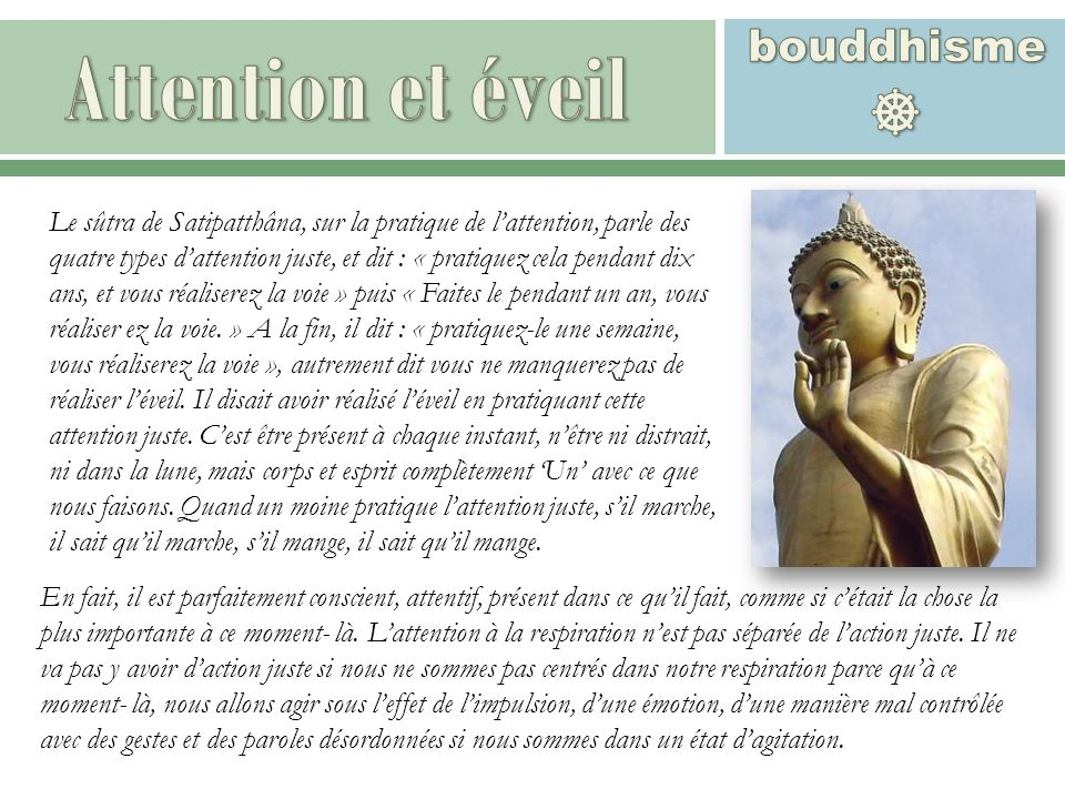 Attention et éveil  bouddhisme
