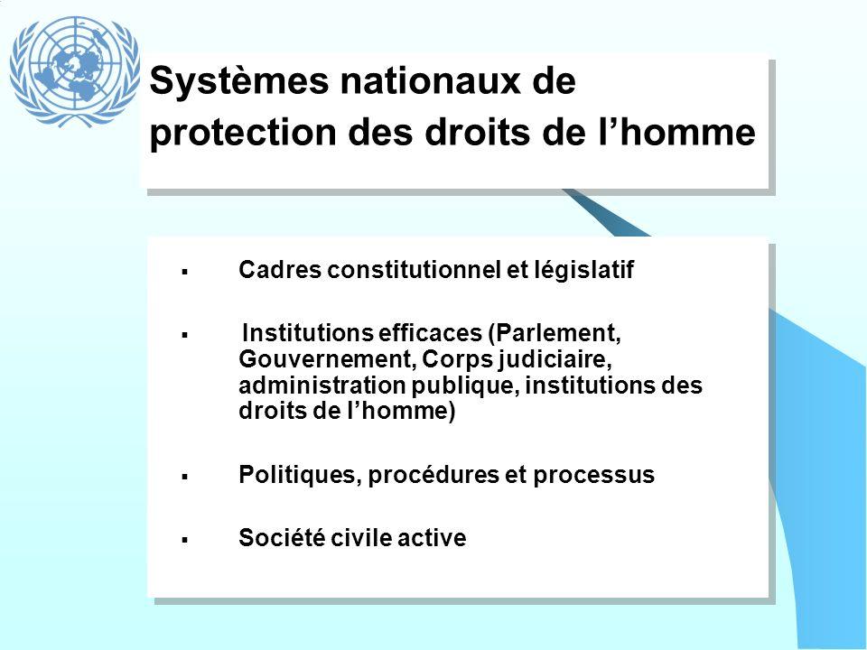 Systèmes nationaux de protection des droits de l'homme