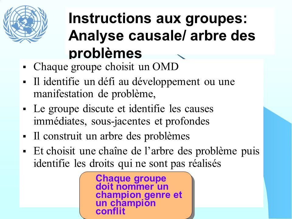 Instructions aux groupes: Analyse causale/ arbre des problèmes