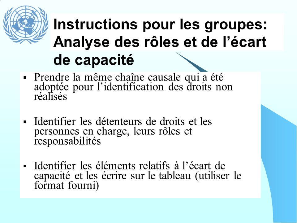 Instructions pour les groupes: Analyse des rôles et de l'écart de capacité