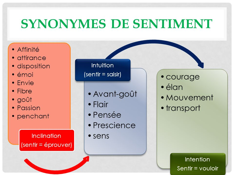 Synonymes de sentiment