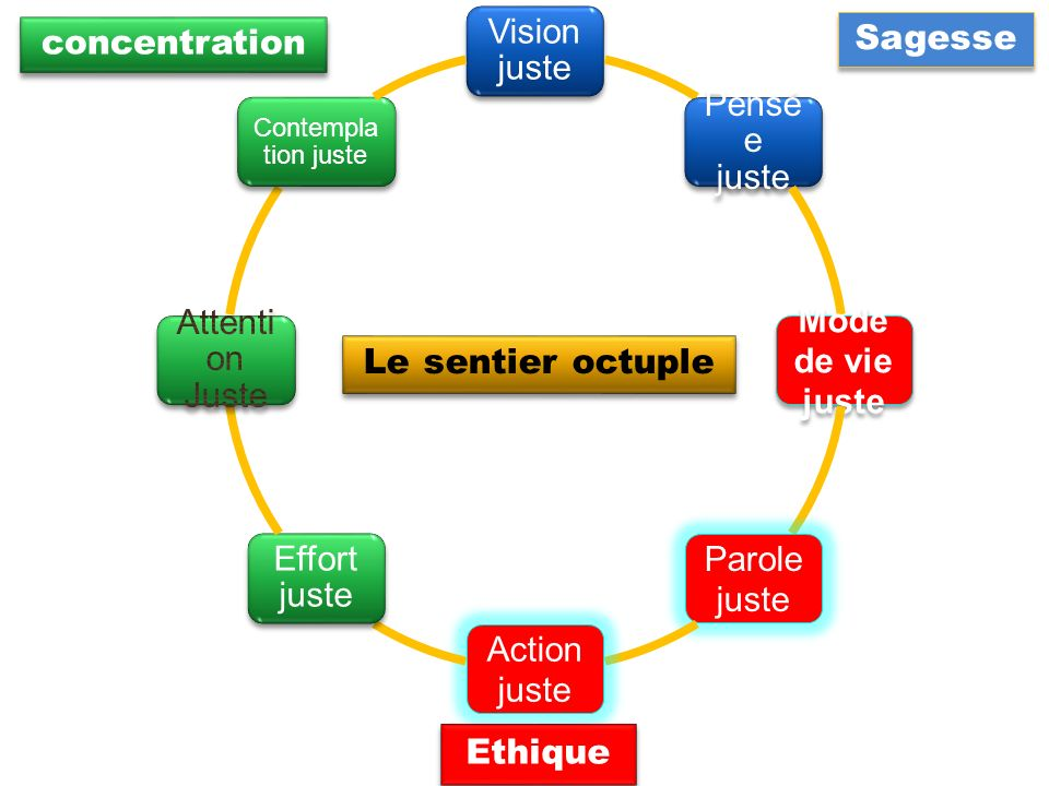 Vision juste Sagesse concentration Pensée juste Attention Juste