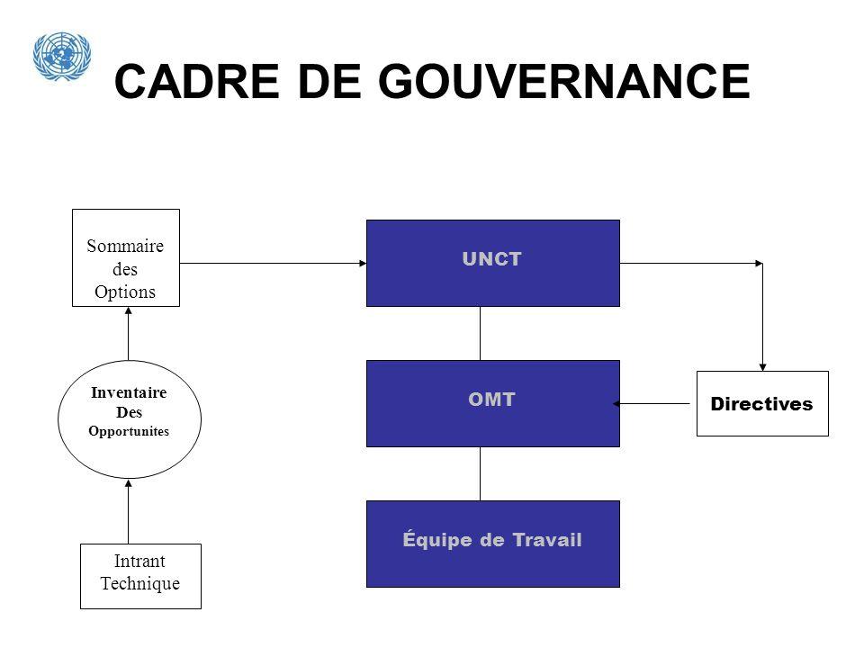 CADRE DE GOUVERNANCE Sommaire des Options UNCT OMT Directives
