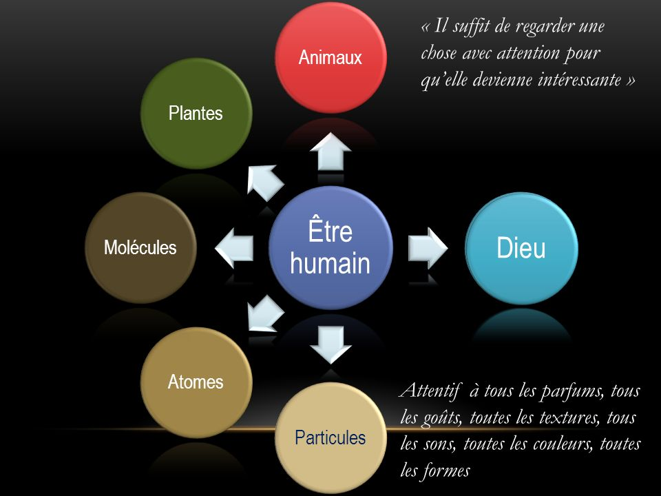 Être humain Animaux. Dieu. Particules. Atomes. Molécules. Plantes.
