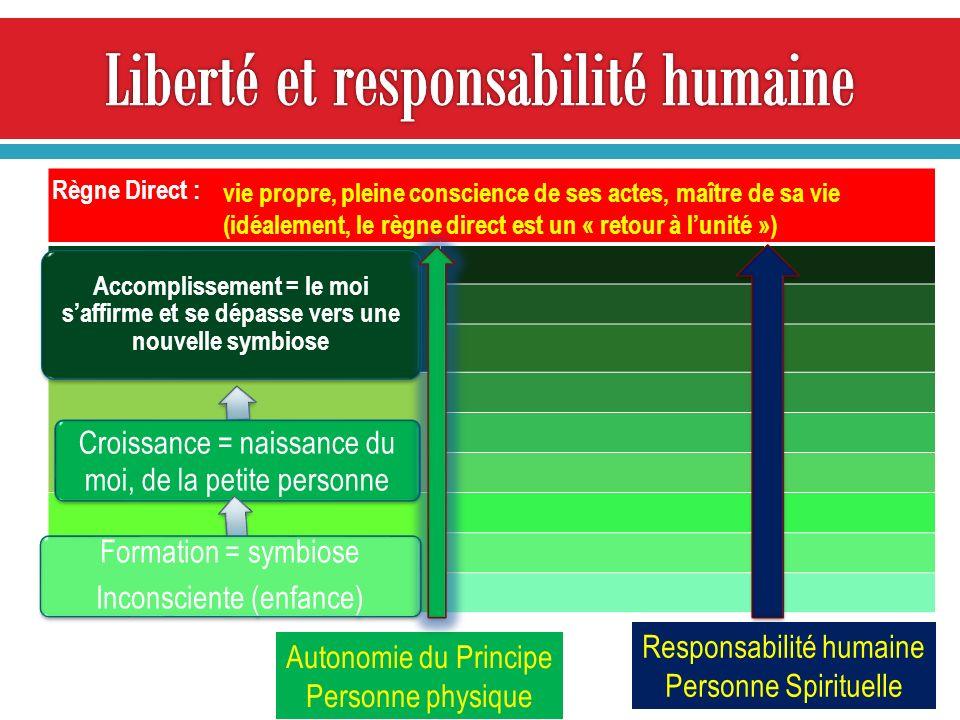 Liberté et responsabilité humaine