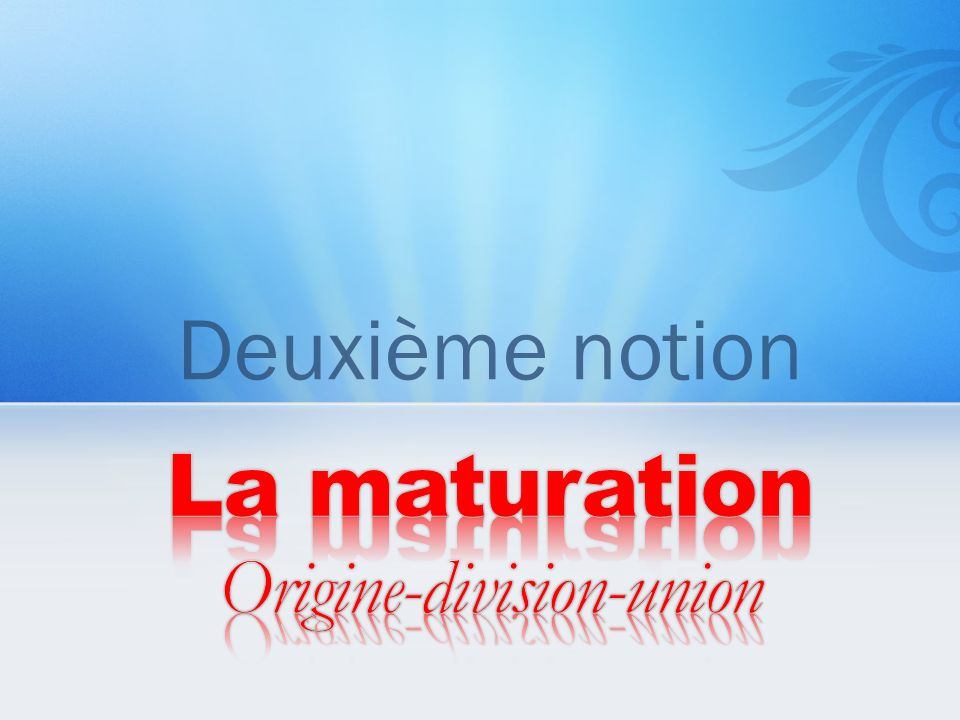 La maturation Origine-division-union